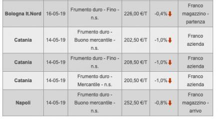 produzione italia grano duro2